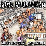 Different Pigs Same Shit